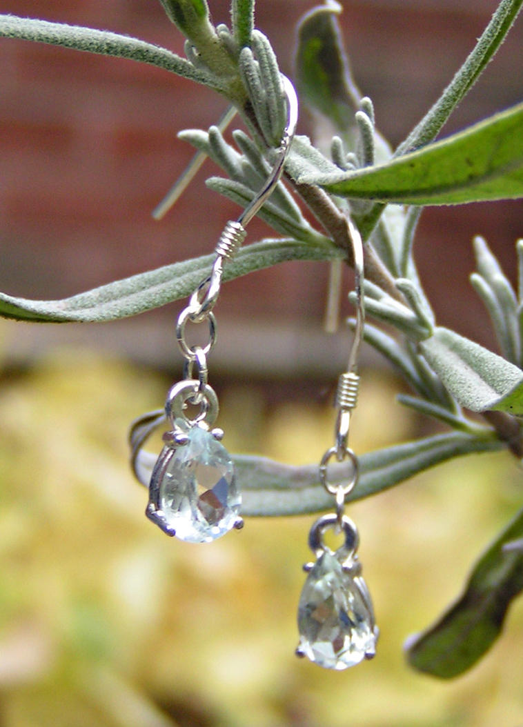 Frozen Tears Dangle Earrings by Izile
