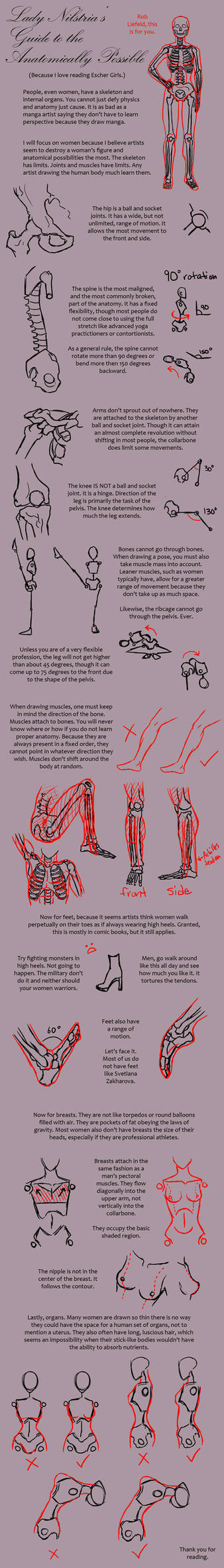 Lady Nilstria's Guide to the Anatomically Possible