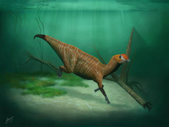 Aquilarhinus amphibious by Damir-PradoT