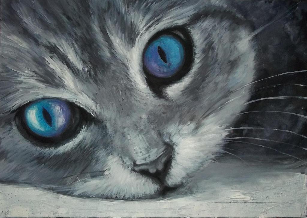 Cat by Giac0mo