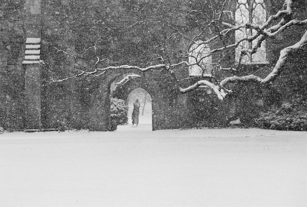 He Wanders in the Snow by EarthHart