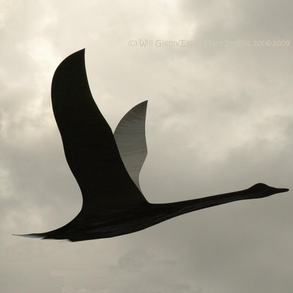 Fly Away 1 by EarthHart
