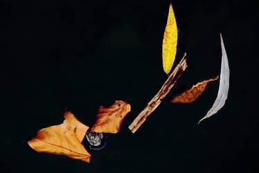 ZEN, and the Art of Autumn