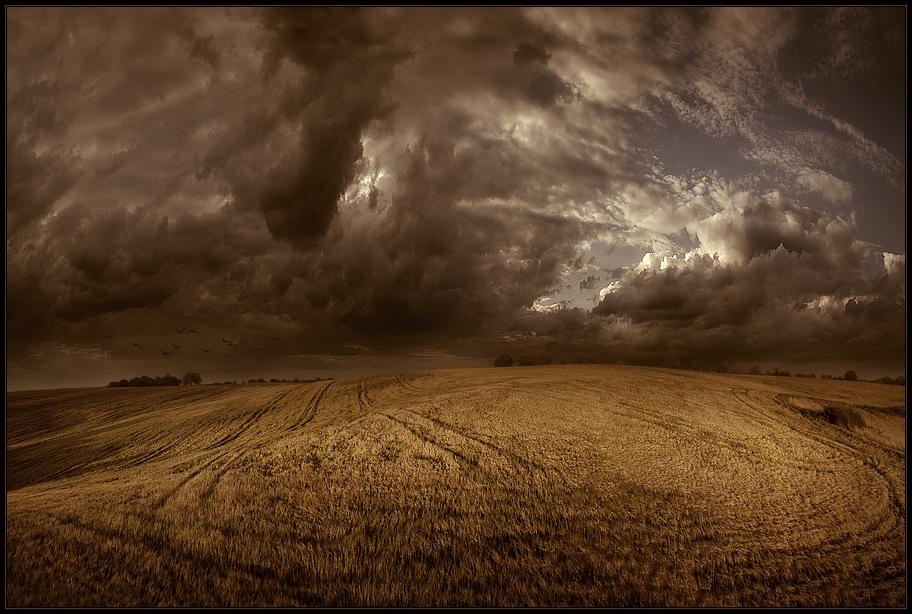 fantasy... by xcaliforniax