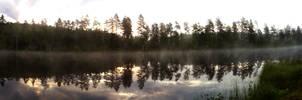 Early Summermorning