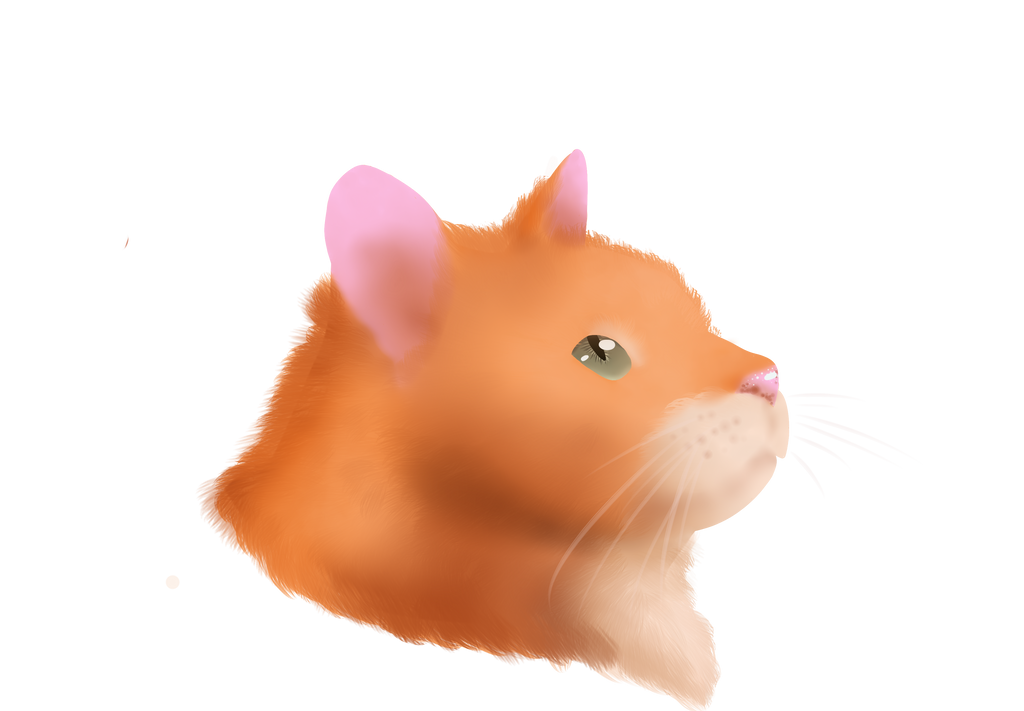 Fireheart From Warrior Cats by InsertCoolNameHere5