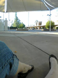 Mesa AZ, convention center by fmgecko