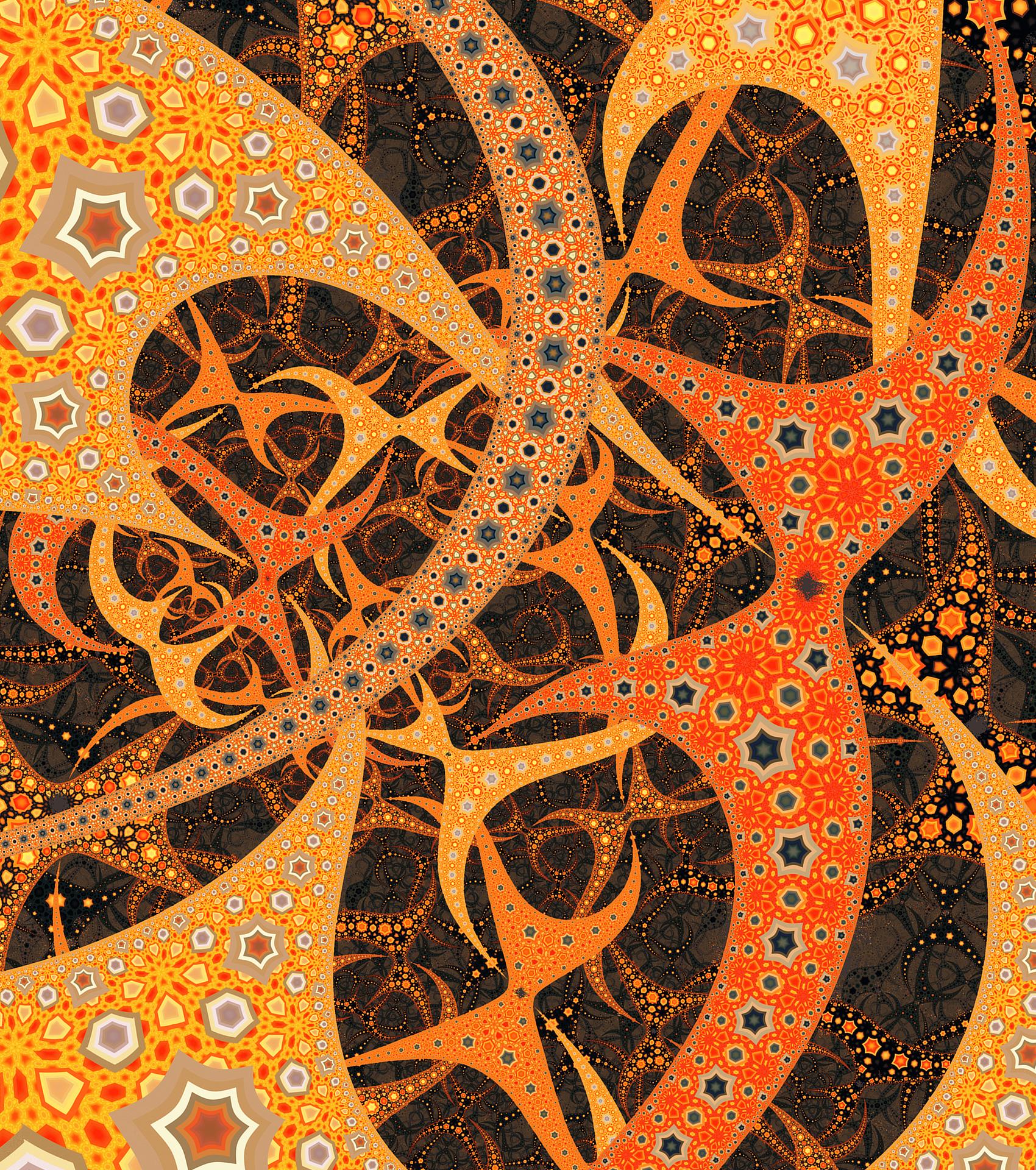 Oranges by tatasz