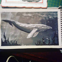Whale by MeyFlory
