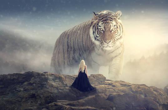 Big tiger by crissouza