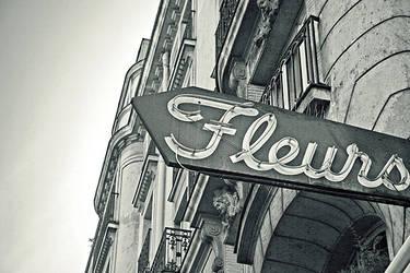 Fleurs by mattrobinsonphoto
