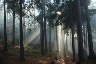 Light Work by My-dynig-soul