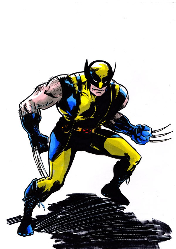 Wolverine by tomcrielly