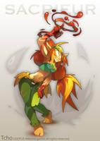 Dofus Character sacrieur by tchokun