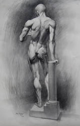 Anatomy by MyFantasie