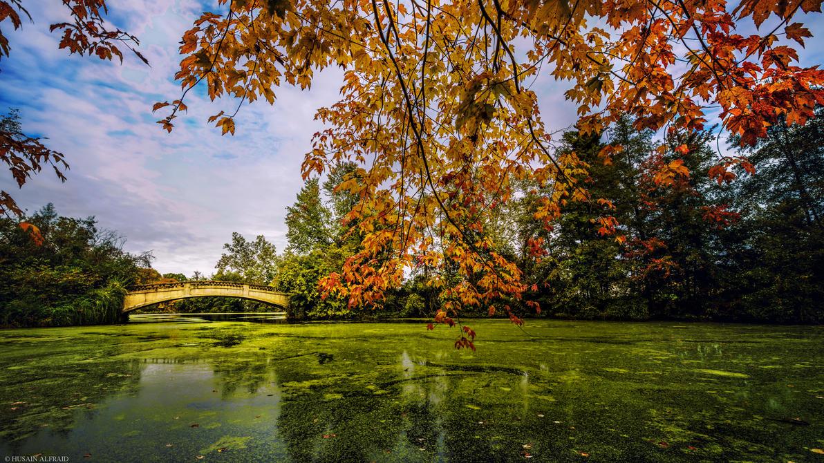 Autumn Bridge by bad95killer