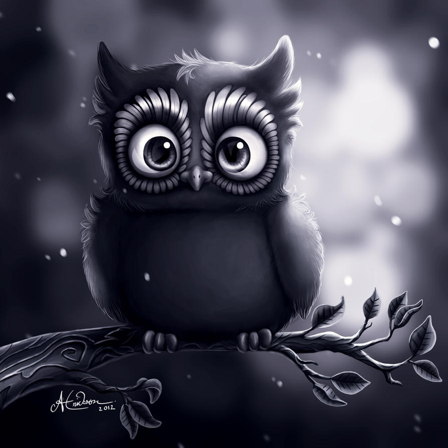 Owly by Hidden-Rainbows