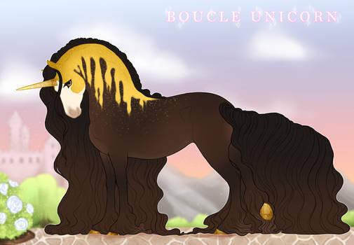 Boucle Unicorn Import V191