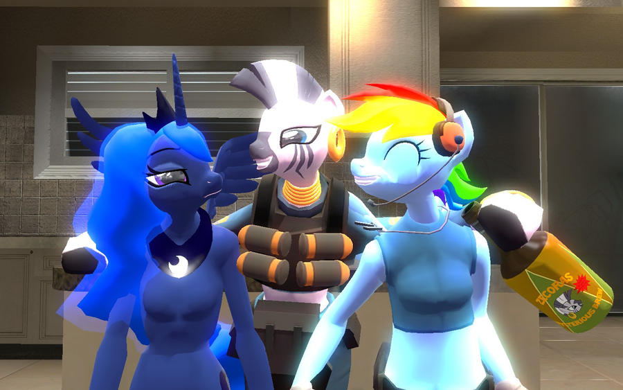 ponies in gmod