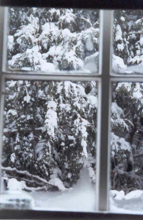 Snowy Window by CaptainCarl