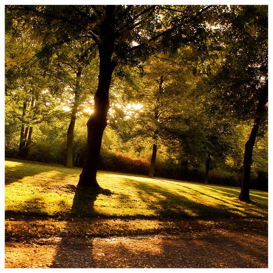 autumn by rattattart