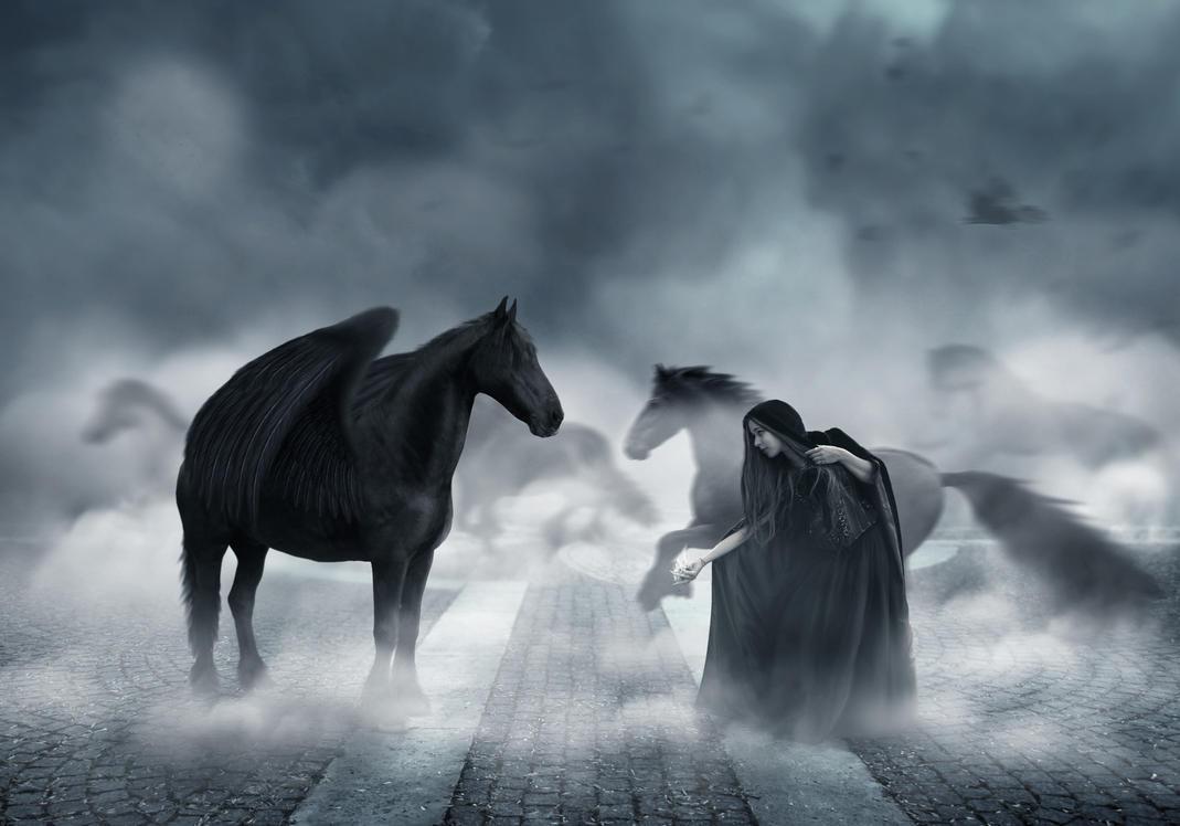 Dark by CRaght