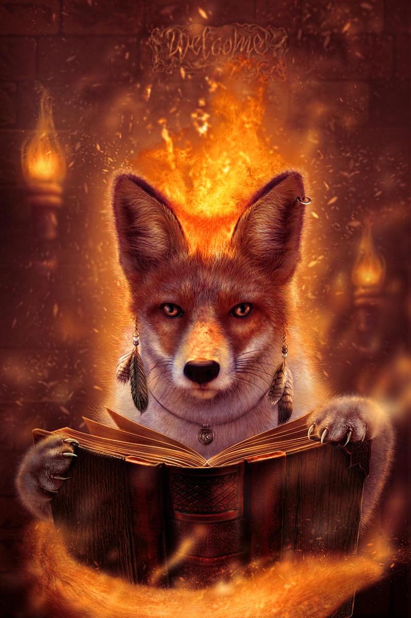 http://img15.deviantart.net/4544/i/2015/099/e/8/fire_fox_by_craght-d8p1xtk.jpg