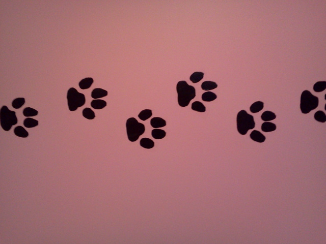 Download paw print wallpaper border gallery - Paw print wall border ...