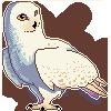 Snowy Owl by Fuzzyspirit