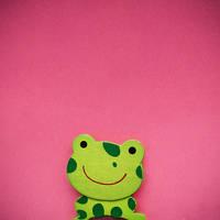 Froggy by stardixa