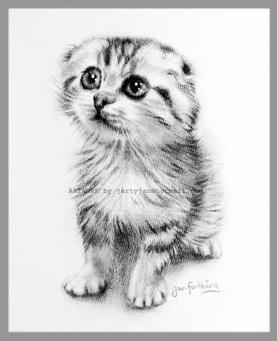 cute kitten drawing sold by rayvenjan on deviantart