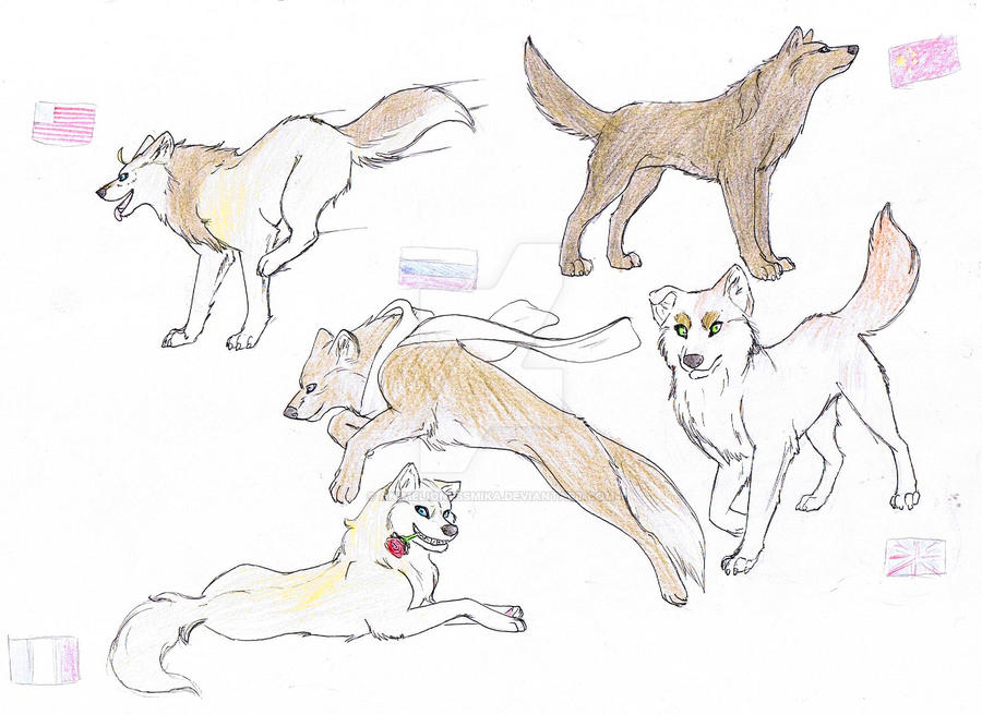 Wolftalia: the Allies forces by AnimeLionessMika