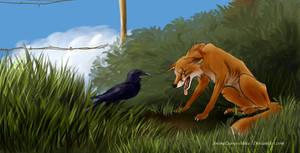 Bold, the fox