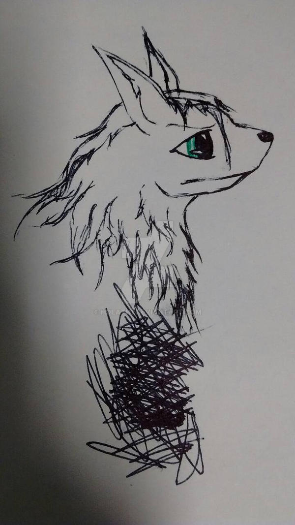 random sketch xP
