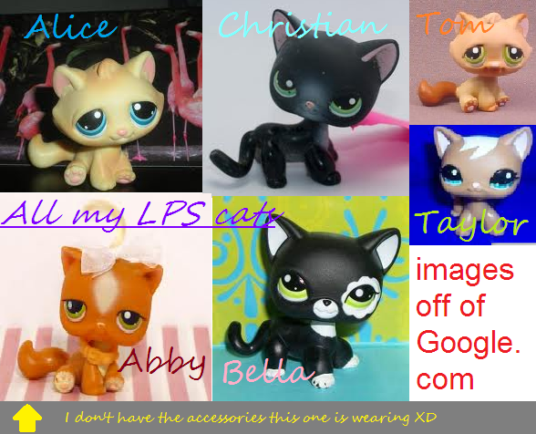 All Lps Cats I Have 3 By Honey Pawstep On Deviantart