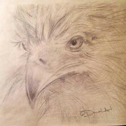 Birdie by Docali