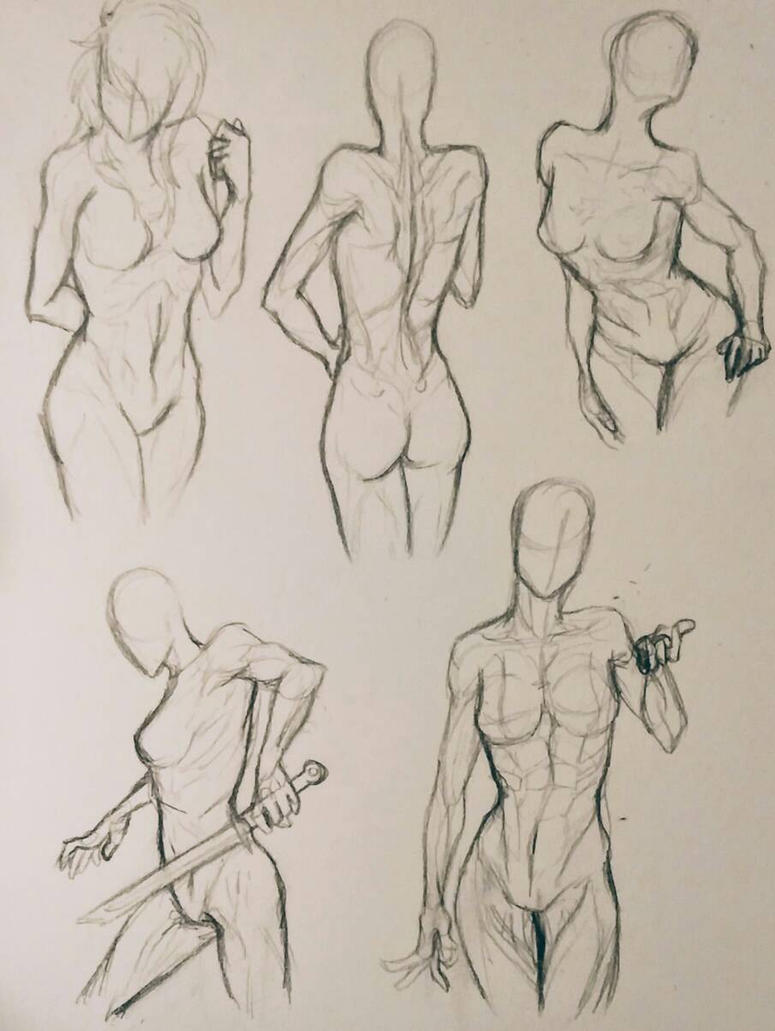 Female Anatomy Practice by Mg-Wolfore on DeviantArt