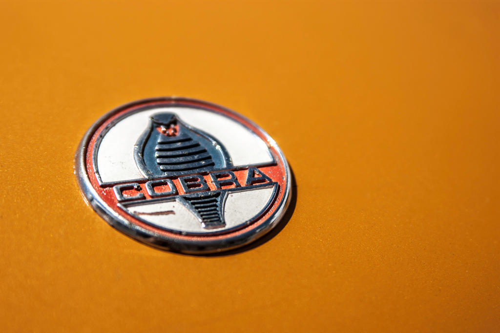 1964 Shelby Cobra: detail 1 by rubrduk