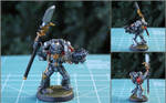 Ionnis the Grey Knight