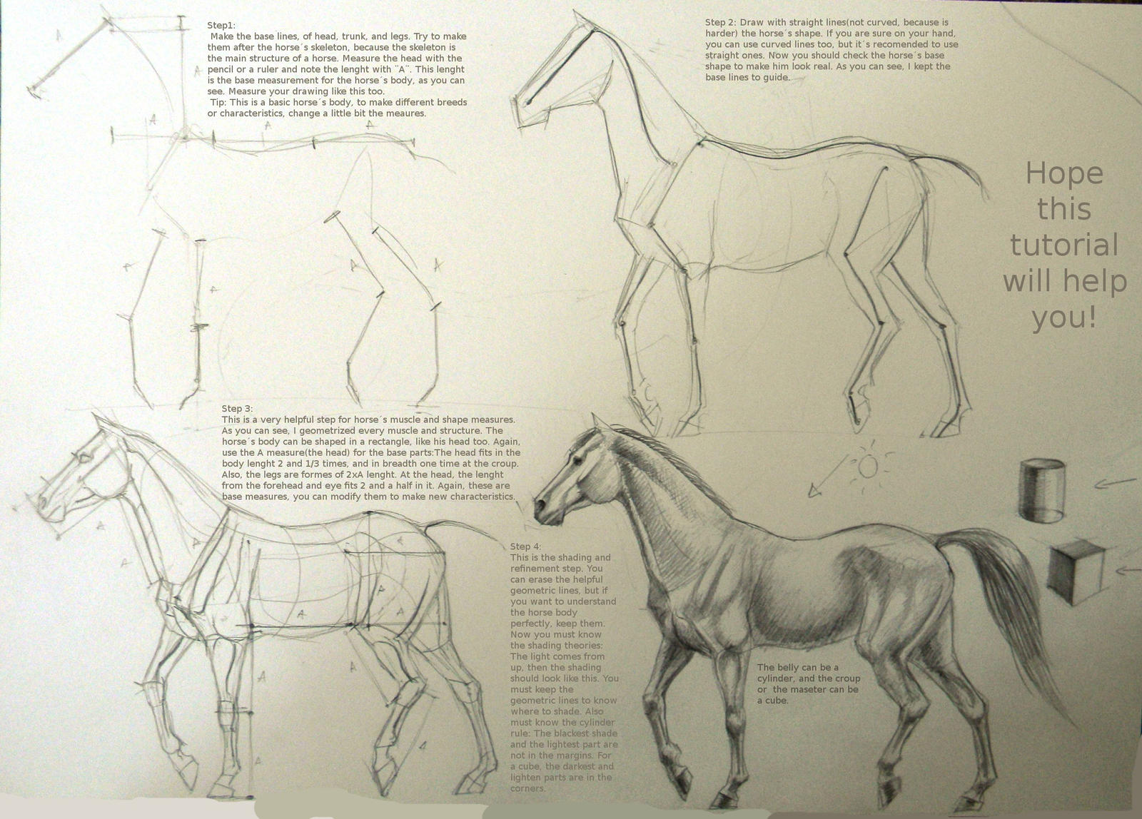 Horse drawing tutorial by Winnetah on DeviantArt