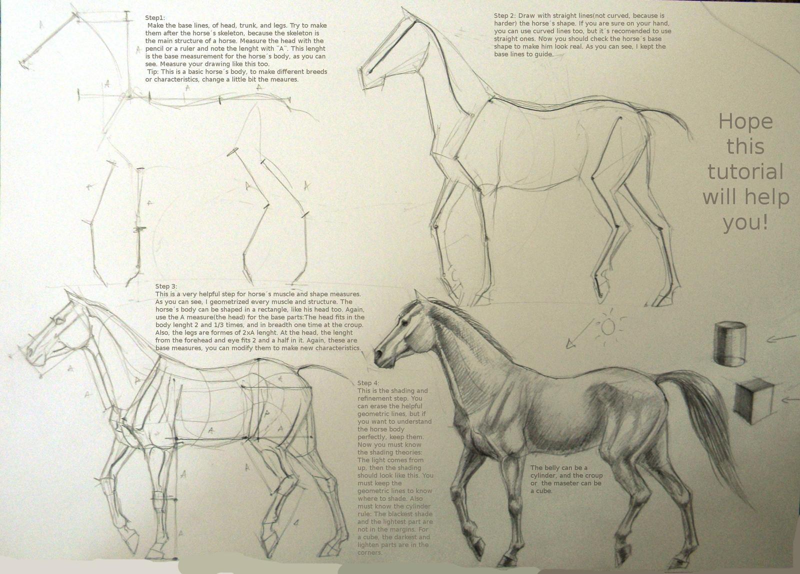 Horse drawing tutorial by Winnetah