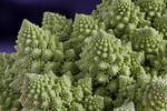 Romanesco cabbage by rajaced