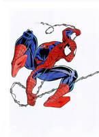 Spider-Man by BorisPeci
