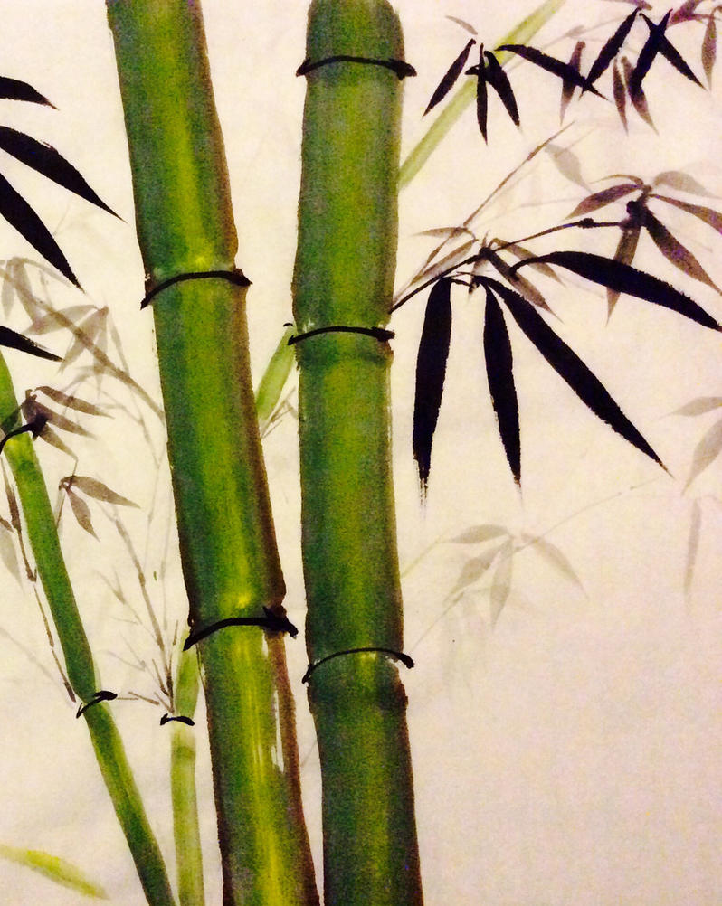 Bamboo spring by RosalindClarke