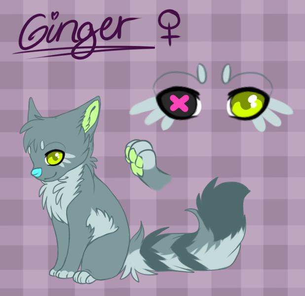 Ginger Chibi Ref Sheet by Sorasongz