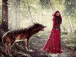 Encounter with the wolf