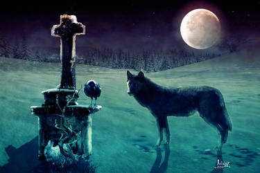 The hungry wolf by Julianez