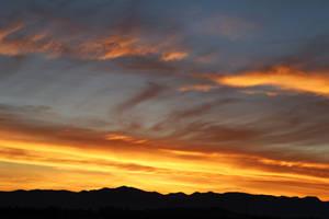 Dawn (1)