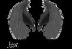 dark wings 3 Julianez