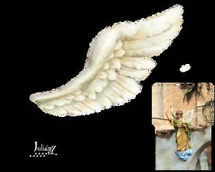White wing by Julianez